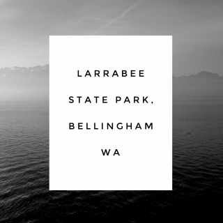 Larrabee State Park in Bellingham, WA {local love}