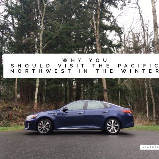 Why You Should Visit the Pacific Northwest in the Winter