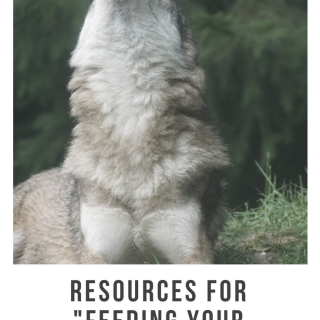 Resources To Feed Your Good Wolf
