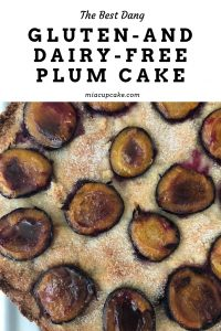 Gluten-Free Dairy-Free Plum Cake So Good, Even Gluten and Dairy Eaters Will Love It